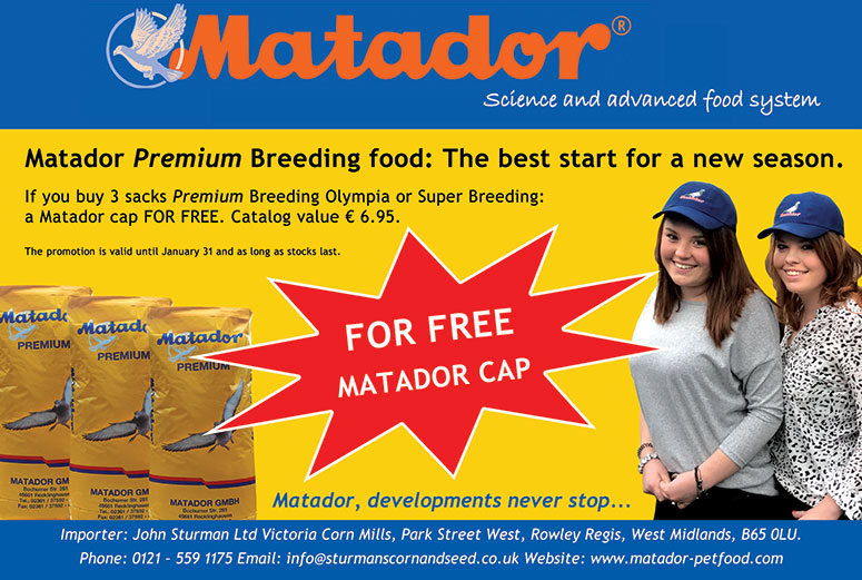Matador Premium Super Breeding Offer
